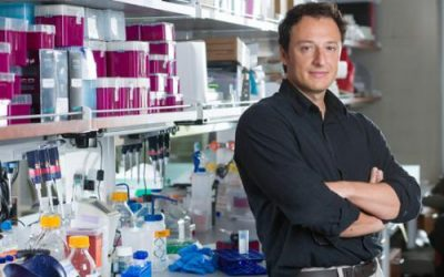UCSD Researcher Gets 1.85 Million Dollar Autism Grant
