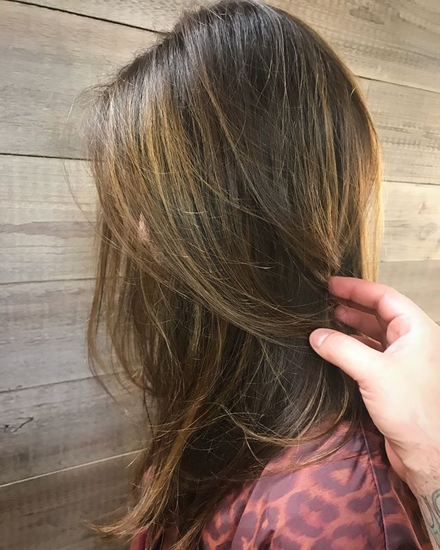 Aveda's new Full Spectrum Demi+ line provides more shine, vibrancy, and better gray coverage._________________________________#instahair #instabeauty #atthesalon #salonlife #hair #hairspiration #hairsalon #haircolor #hairstyles #hairstyling #haircut #carlsbad #sandiego #sandiegohair #carlsbadhair #aveda #avedacolor #avedaproducts #avedaartist #smellslikeaveda #avedademiplus #fullspectrum