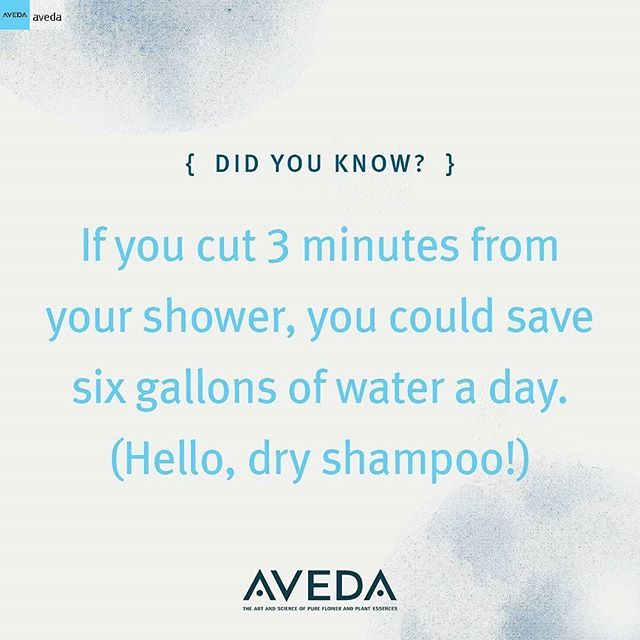 Small changes can have big impact. If you shower daily, you could save around 2,190 gallons (8,290 litres) of water a year.* Use #DryShampure to refresh your hair between washes to save water — and maybe get a little more beauty sleep too! (*Average shower in the U.S. uses 2 gallons per minute. Source: U.S. Geological Survey.)______________________#instahair #instabeauty #atthesalon #salonlife #hair #hairspiration #hairsalon #haircolor #hairstyles #hairstyling #haircut #carlsbad #sandiego #sandiegohair #carlsbadhair #aveda #avedacolor #avedaproducts #avedaartist #avedaglobalartist #avedacleanwater #avedamission #plazapaseoreal