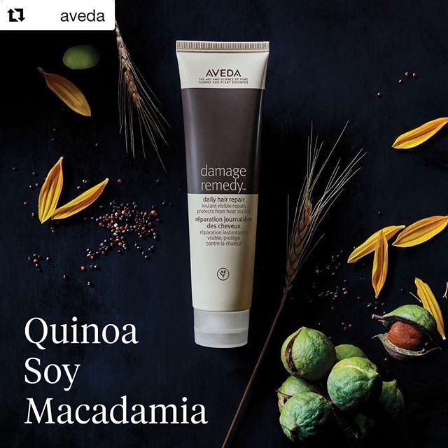 Go from breakage to beauty ASAP with #DamageRemedy Daily Hair Repair. Experience instant visible repair with 98% naturally derived ingredients. #knowwhatyouremadeof_______________________#Repost @aveda with @get_repost#aveda #ingredients #styledbyaveda #haircare #hairgoals #haircareroutine #avedasalon #sandiegohair #crueltyfree #botanicals #carlsbadsalon #avedaartist #dailyhairrepair