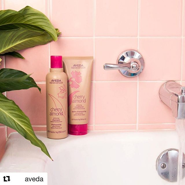 Your shower + new #CherryAlmond shampoo and conditioner = a match made in soft, shiny hair heaven! What more could you ask for? #smellslikeaveda___________________________#instahair #instabeauty #atthesalon #salonlife #hair #hairspiration #hairsalon #haircolor #hairstyles #hairstyling #haircut #carlsbad #sandiego #sandiegohair #carlsbadhair #aveda #avedacolor #avedaproducts #avedaartist #smellslikeaveda #crueltyfree #botanicals #knowwhatyouremadeof #plazapaseoreal #cherryalmond #repost @aveda