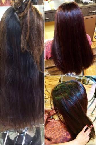 INTENSE and Refresh color by Blyss…