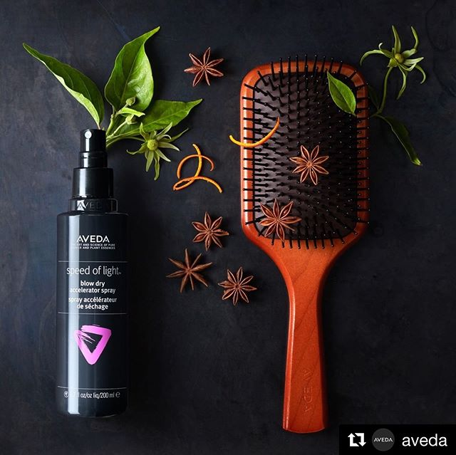 Every blow dry should SMELL as good as it LOOKS. #SpeedofLight blow dry accelerator spray features a citrusy aroma of certified organic mandarin, star anise, ylang ylang and other pure flower and plant essences. Spray it on and see why it's so special. ___________________________#instahair #instabeauty #atthesalon #salonlife #hair #hairspiration #hairsalon #haircolor #hairstyles #hairstyling #haircut #carlsbad #sandiego #sandiegohair #carlsbadhair #aveda #avedacolor #avedaproducts #avedaartist #smellslikeaveda #crueltyfree #botanicals #knowwhatyouremadeof #plazapaseoreal#repost @aveda