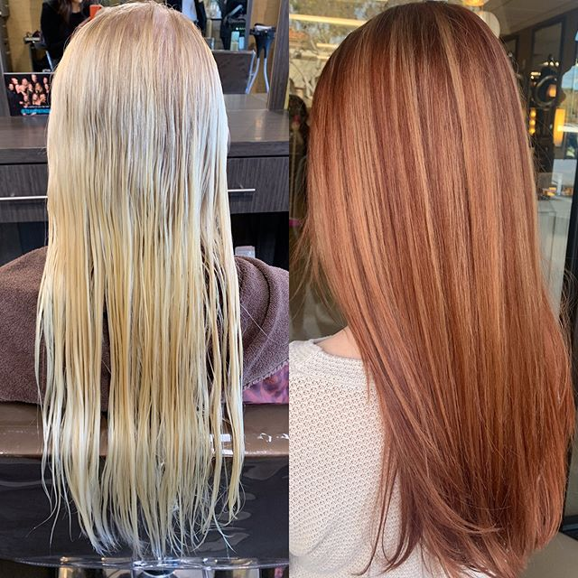 It doesn't need to be Tuesday to appreciate this transformation!! Beautiful Copper Dimension on the perfect canvas! ___________________________#instahair #instabeauty #atthesalon #salonlife #hair #hairspiration #hairsalon #haircolor #hairstyles #hairstyling #haircut #carlsbad #sandiego #sandiegohair #carlsbadhair #aveda #avedacolor #avedaproducts #avedaartist #smellslikeaveda #crueltyfree #botanicals #knowwhatyouremadeof #plazapaseoreal#dimensionalcolor
